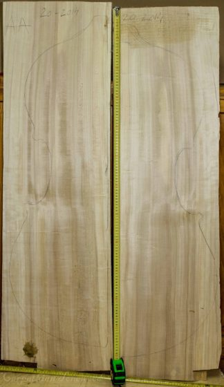Double bass No.20 Back and Sides made with Poplar in 2014 AA grade