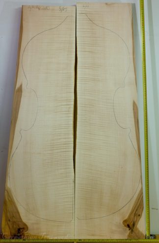 Double bass No.4 Back and Sides made with Curly maple in 2015 AAA grade