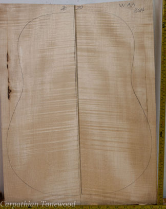 Guitar western No.210 Back and Sides made with Curly maple in 2014 AA grade