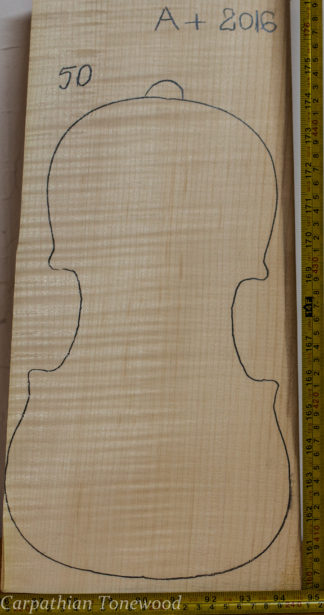 Violin No.50 One piece Back and Sides made with Curly Maple in 2016 A grade