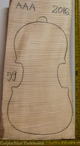 Violin No.59 One piece Back and Sides made with Curly Maple in 2016 AAA grade