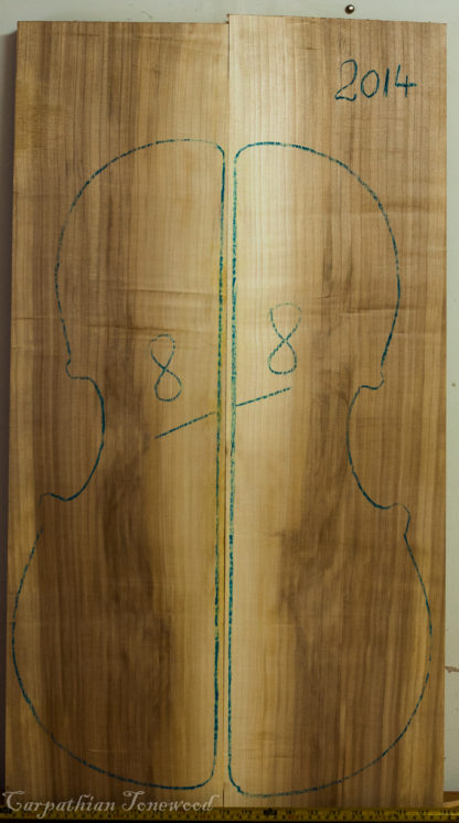 Cello No.8 Back and Sides made with Poplar in 2014 AA grade