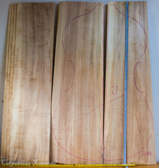 Double bass No.3 Back and Sides made with Poplar in 2014 AA grade