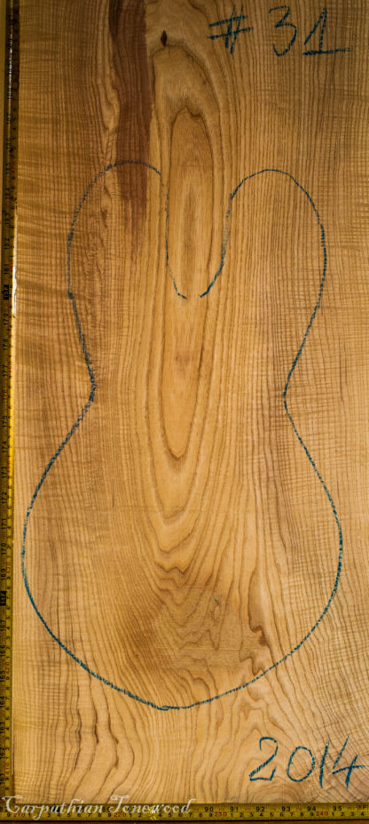 Guitar electrical No.31 Top made with Ash in 2014 A grade