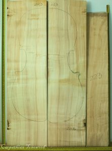 Cello No.223 Back and Sides made with Poplar in 2014 AA grade