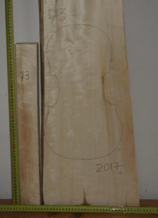 Viola No.73 One piece Back and Sides made with Poplar in 2017 AA grade
