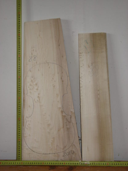 Viola No.88 One piece Back and Sides made with Poplar in 2017 AA grade