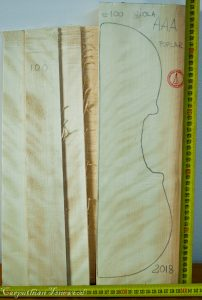 Viola No.100 Back and Sides made with Poplar in 2018 AAA grade