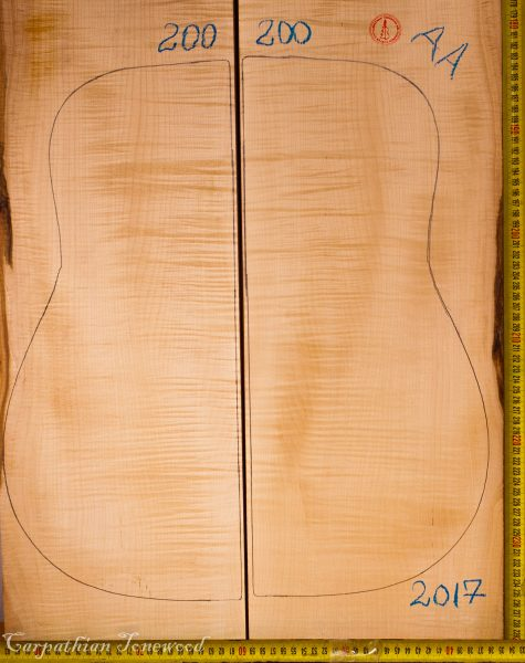Guitar archtop No.200 Back and Sides made with Curly Maple in 2017 AA grade