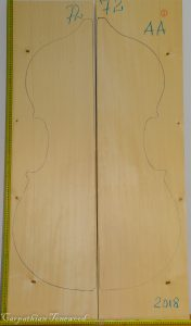 Double bass No.72 Top made with Spruce in 2018 AA grade