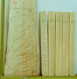 Viola Poplar One piece Back and Sides
