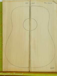 Acoustic Guitar Red Spruce Top ( Adirondack)