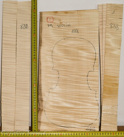 Violin No.888 One piece Back and Sides made with Curly Maple in 2018 Master grade