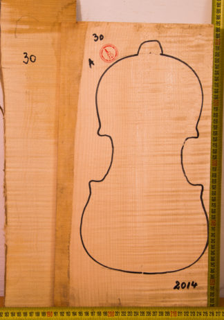 Violin No.30 One piece Back and Side