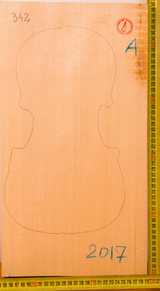 Violin No.342 One piece Top