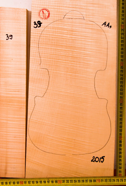 Violin No.39 One piece Back and Sides