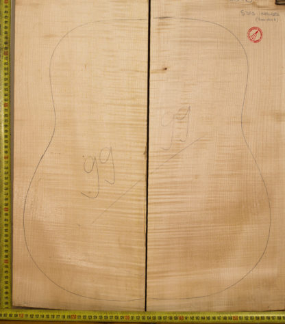 Guitar archtop No.99 Back and sides