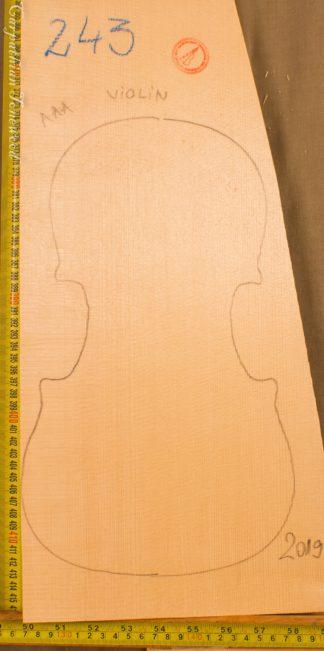 Violin No.243 One piece Top