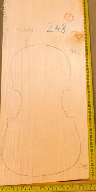Violin No.248 One piece Top