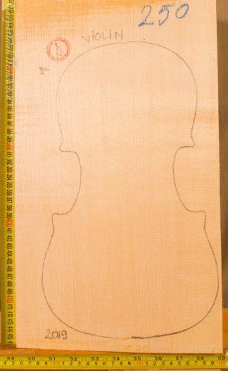 Violin No.250 One piece Top
