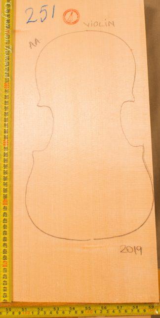 Violin No.251 One piece Top