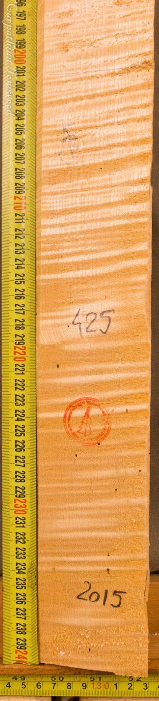 Violin No.425 Neck