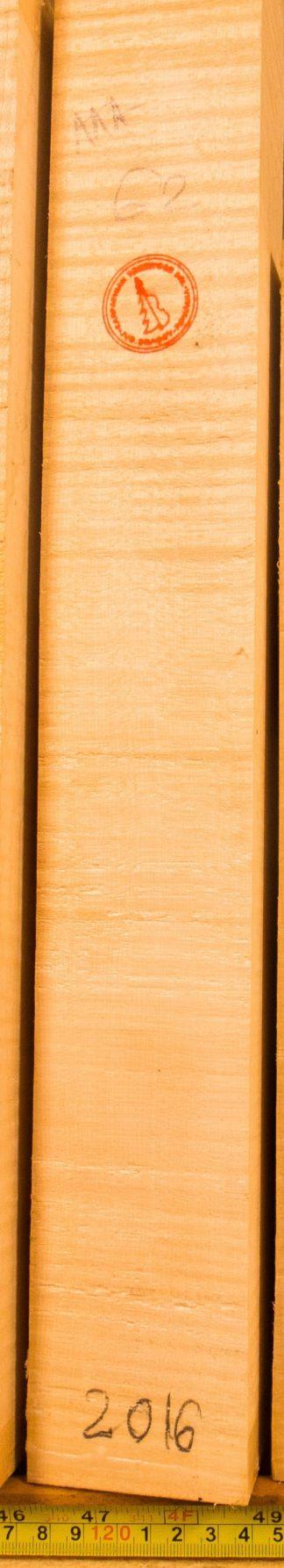 Violin No.62 Neck