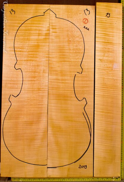 cello curly maple back and sides