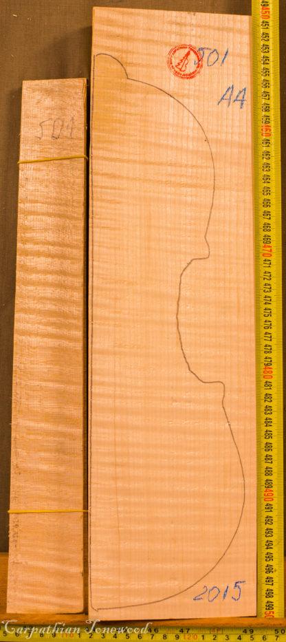 Viola No.501 Back and Sides
