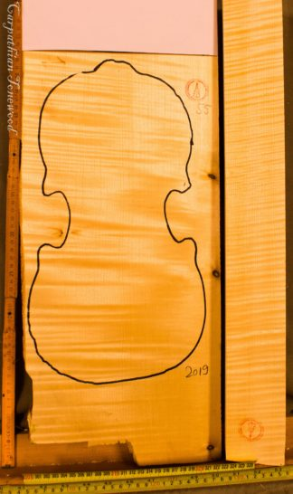 Violin No.55 One piece Back and Sides
