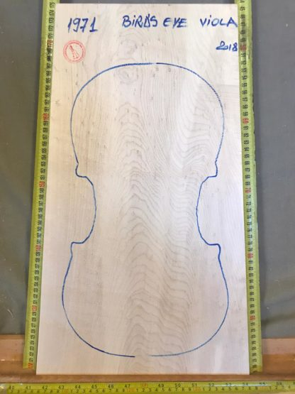 Viola No.1971 One piece Back and Sides