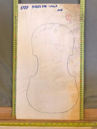 Viola No.1977 One piece Back and Sides