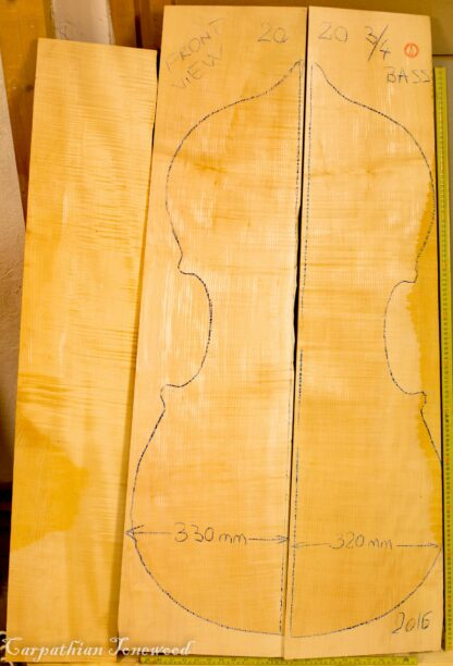 double bass maple back and sides