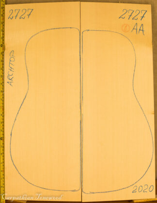 Guitar archtop No.2727 Top