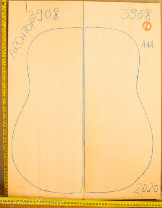 Guitar archtop No.3908 Top