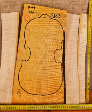 Violin No.5303 One piece Back and Sides