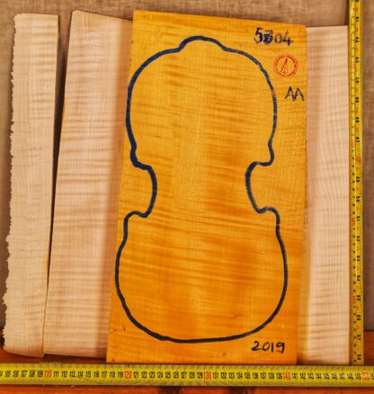 Violin No.5304 One piece Back and Sides