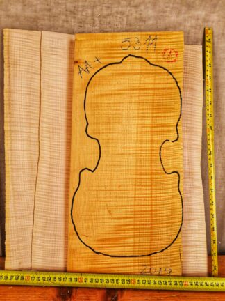 Violin No.5311 One piece Back and Sides