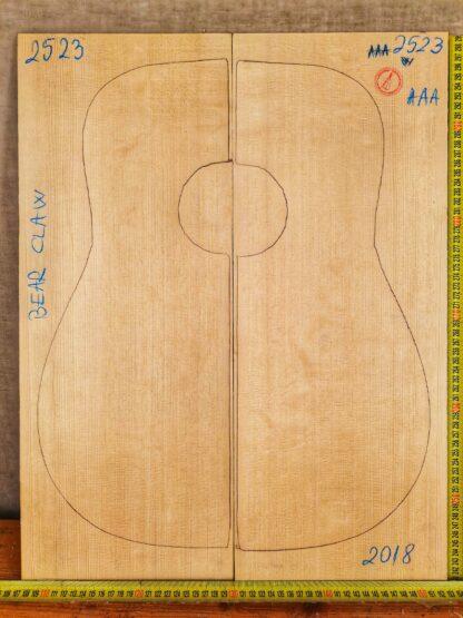 Guitar western No.2523 Top