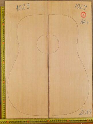 Guitar western No.1029 Top