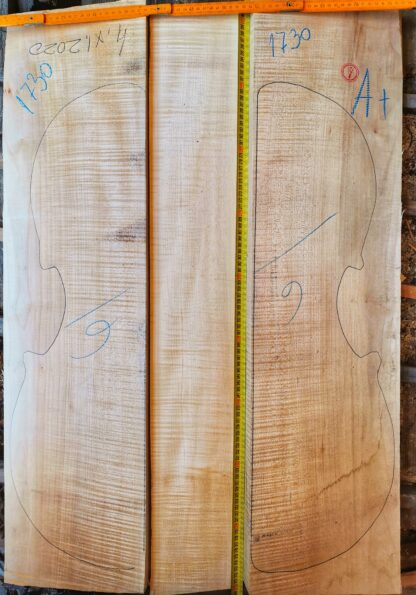 Cello No.1730 Back and Sides