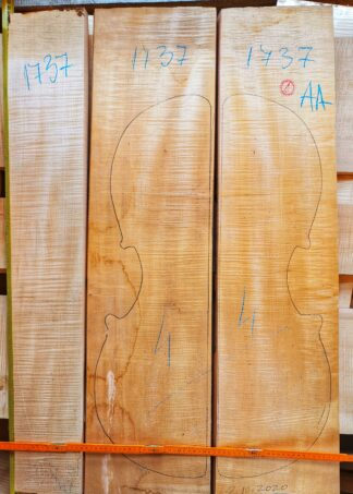 Cello No.1737 Back and Sides