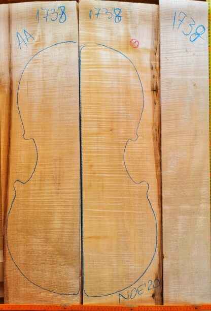 Cello No.1738 Back and Sides
