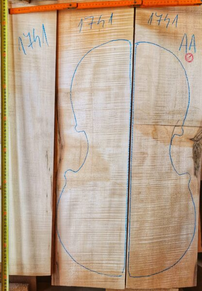 Cello No.1741 Back and Sides