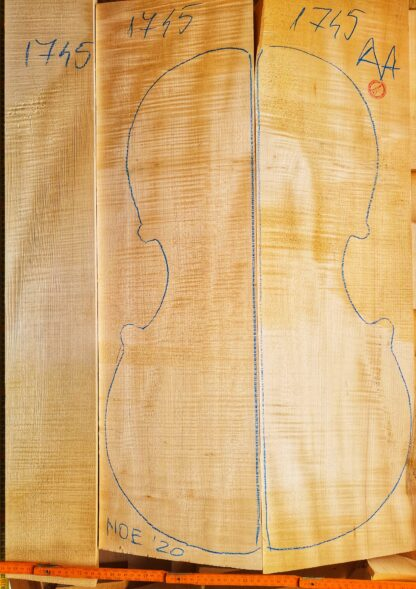 Cello No.1745 Back and Sides