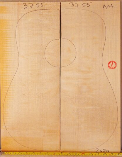 Guitar western No.3755 Top